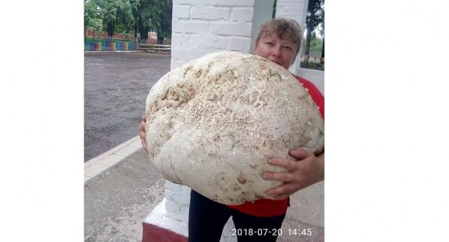 Украинка нашла гриб весом 17 килограммов