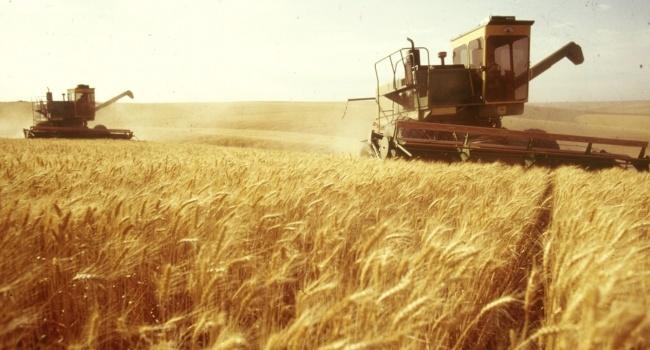 Украина уменьшила показатели, рынки нервничают— Экспорт зерна
