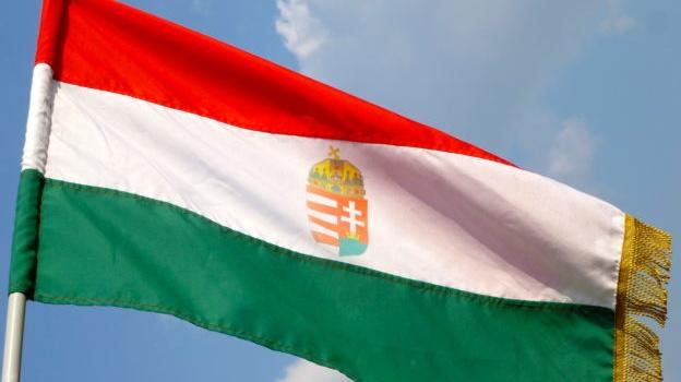 Пономарь: против Венгрии введут санкции
