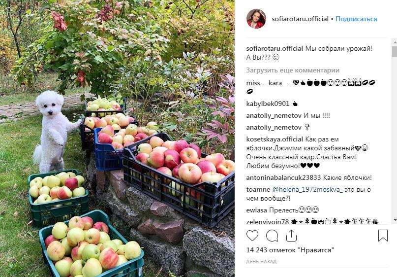 Софию Ротару заподозрили в посещении аннексированного Крыма