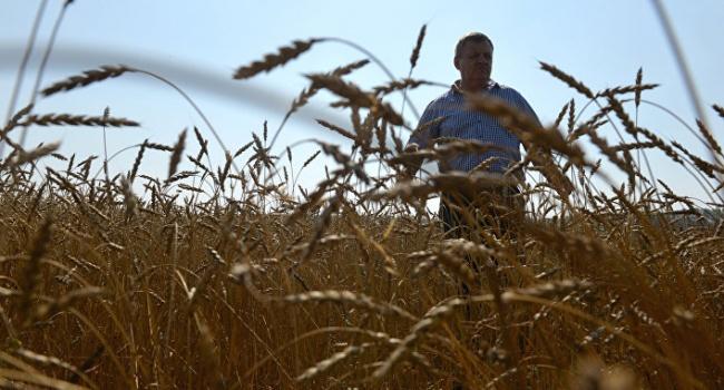 Новый элемент гибридной войны: из-за российских минудобрений украинские фермеры остались без урожая