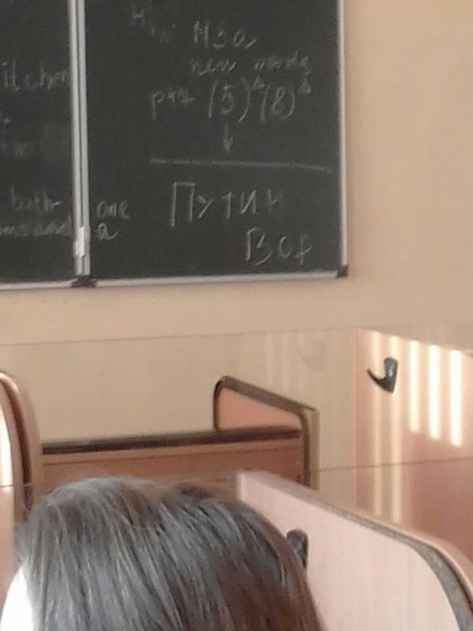 Российские школьники запустили флешмоб: «Путин - вор»