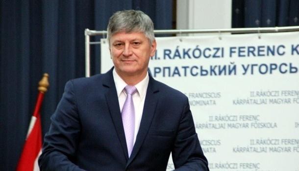 Венгерский представитель озвучил главную задачу по Закарпатью