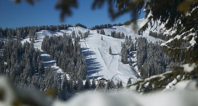 Из-за снежной лавины в Баварии в ловушке оказался целый город