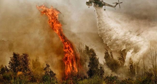 В Новой Зеландии бушует сильнейший лесной пожар