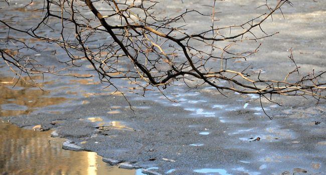 «Весна закончится»: синоптики рассказали о погоде в начале недели