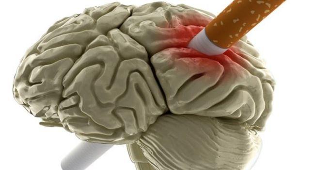 Что провоцирует преждевременное старение мозга