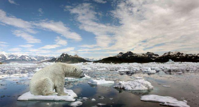 Потепление в Арктике приобрело необратимый характер - ООН