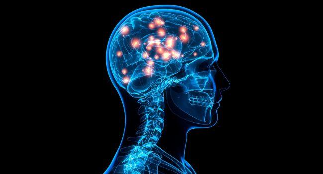 Какие продукты помогают максимально активизировать работу мозга