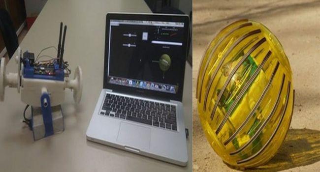 В сельском хозяйстве активно внедряются современные технологии