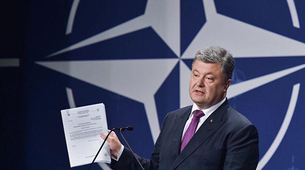 Все разговоры Порошенко о НАТО являются чистым популизмом - Жданов