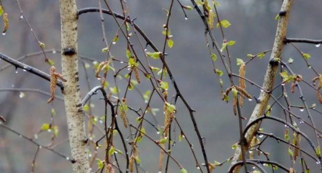 Идут дожди и будут заморозки: синоптик обновила прогноз