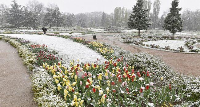 «Мокрий сніг та зниження температури!» Став відомий прогноз погоди на 16 квітня