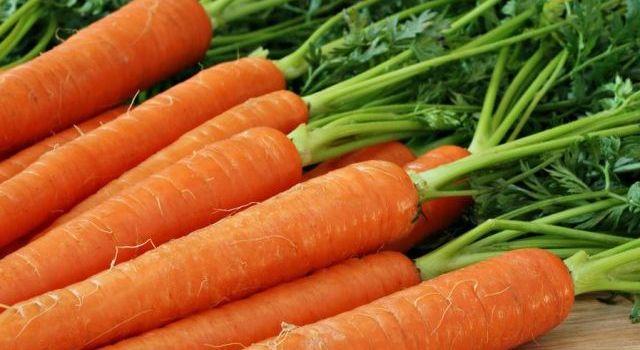 Морковь способна препятствовать появлению злокачественных новообразований
