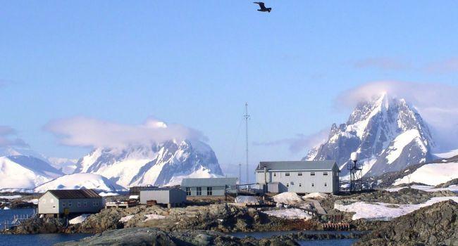 Украинские ученые в Антарктиде заявили об уникальной находке