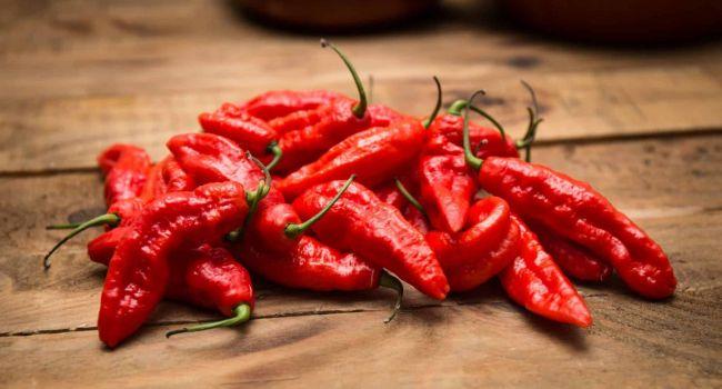 Эксперты назвали лучший продукт для снижения аппетита