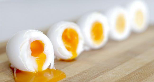 Стоит ли есть гусиные яйца беременным