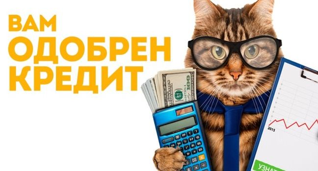 Как гарантированно получить онлайн кредит в МФО