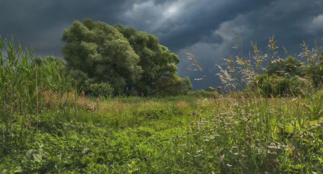 Погода ухудшается: синоптики предупредили о новой волне похолодания