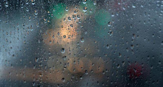 Сегодняшний день будет дождливым