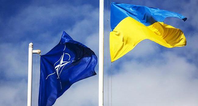 Североатлантический совет НАТО таки прибудет в Украину: названа дата