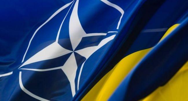 Украина уже внедрила 196 стандартов НАТО, обогнав по этому показателю одну из стран-членов Альянса