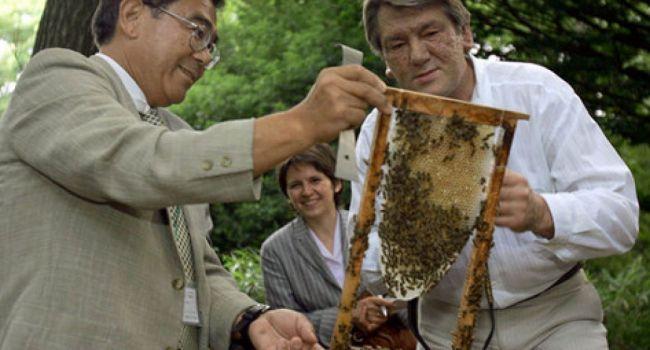 В Хоружевке обучают пчеловодству