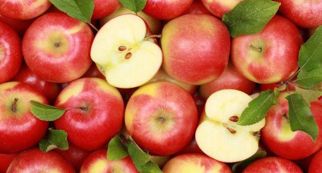 Спрос на яблоки в мире возрастает