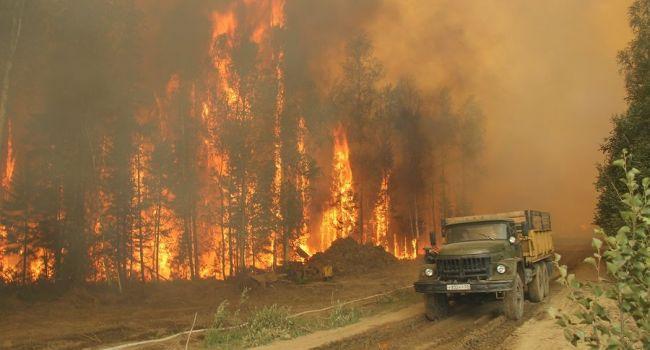 Блогер: «Если вам говорят, что горит вся Сибирь, это значит, что горят полпроцента»