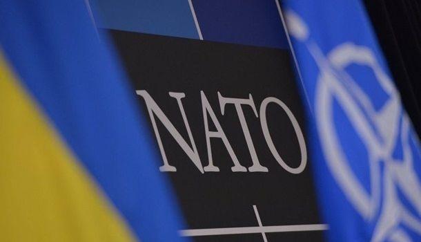 Американский дипломат: Украина может быть претендентом на членство в НАТО