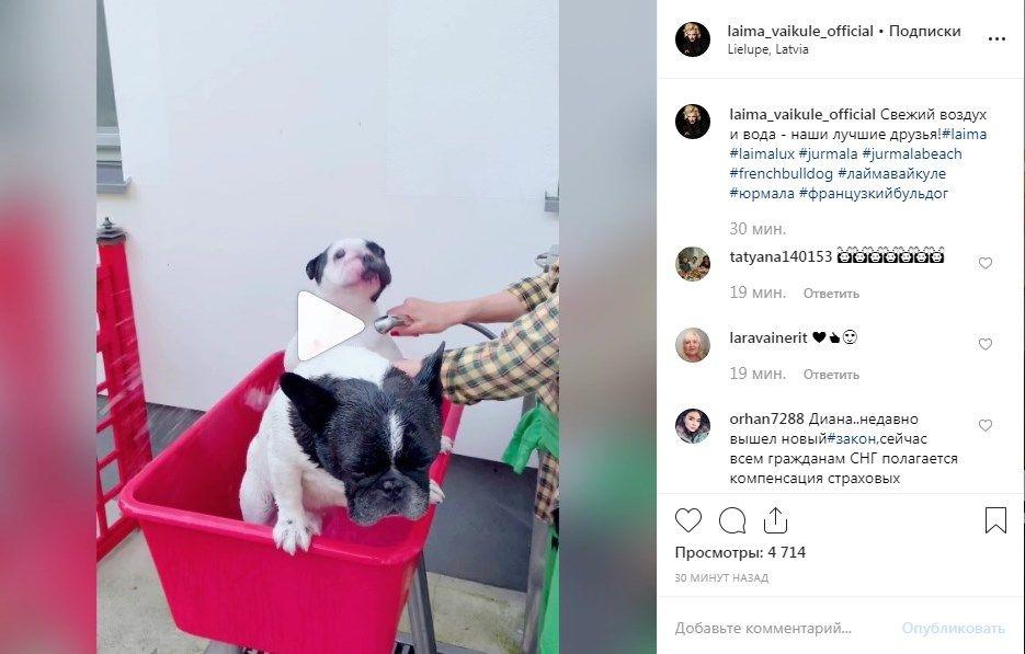 «Какая вы домашняя, хозяюшка»: Лайма Вайкуле показала домашнее видео, показав свой досуг, сеть в восторге