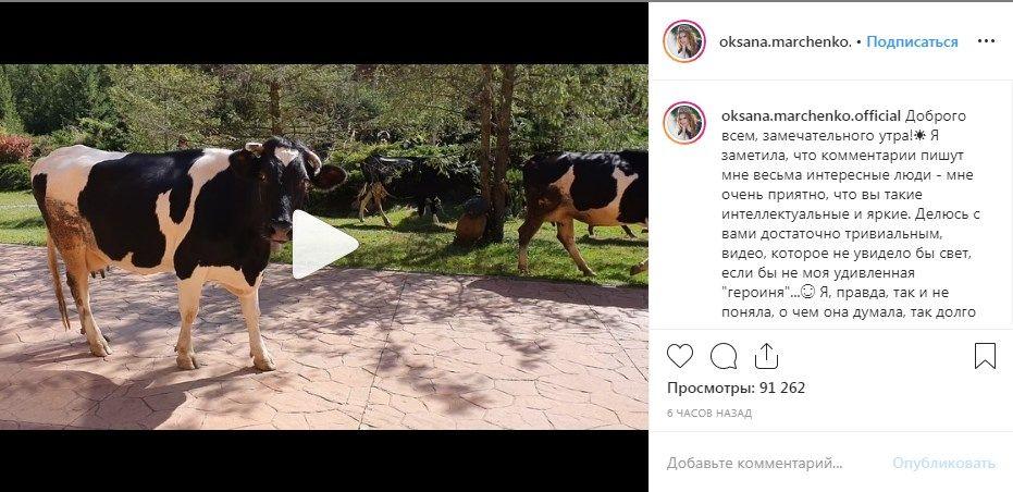 «Оксана? Да ну наф*г... Померещилось»: Марченко опубликовала в сети новое необычное видео, показав, как проходит ее понедельник
