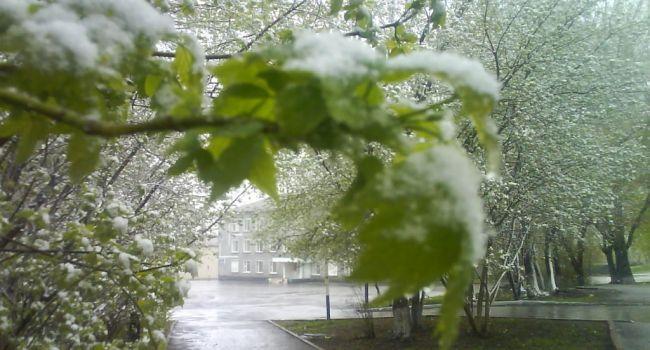 Бархатный сезон откладывается: Российский курорт накрыло мощным снегопадом