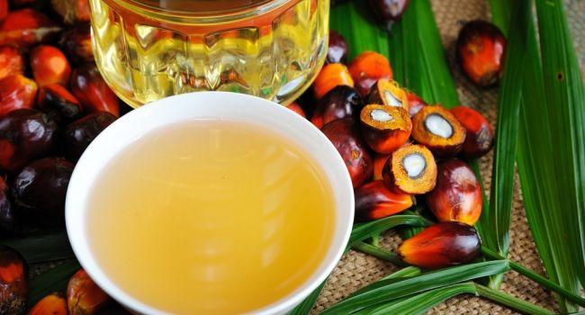 «Непоправимые последствия»: ученые обнаружили еще одну опасность пальмового масла