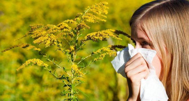 Всему виной глобальное потепление: медики заявили об увеличении числа аллергиков