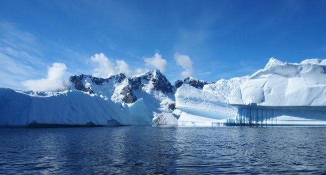 Спасут от опасных болезней: ученые сделали заявление о живых организмах в Антарктиде