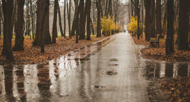 Холодная осень придет уже на следующей неделе: синоптики огорошили прогнозом