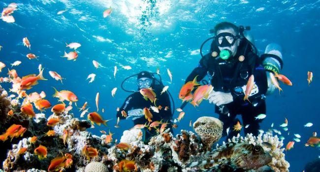 Строгий контроль и жёсткие правила для туристов: в Египте приняли важное решение