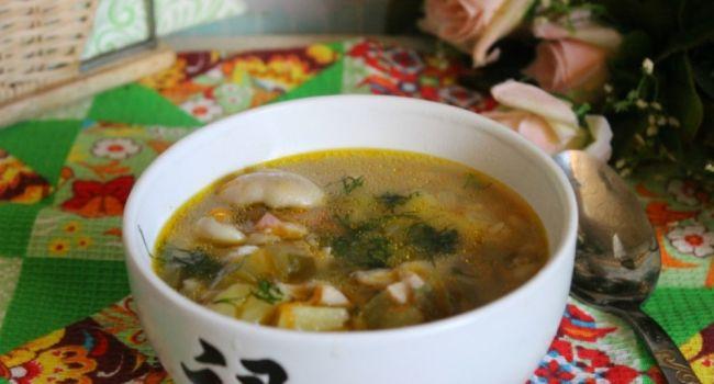 Сезон грибов в разгаре: Готовим суп из свежих маслят