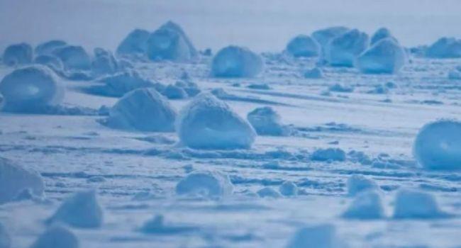 Даже пингвины испугались: Ученые показали необычной снег в Антарктиде