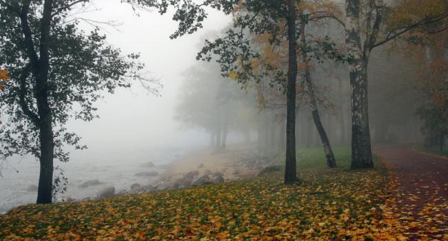 Туманы и очень тепло: Синоптики рассказали о погоде в выходные