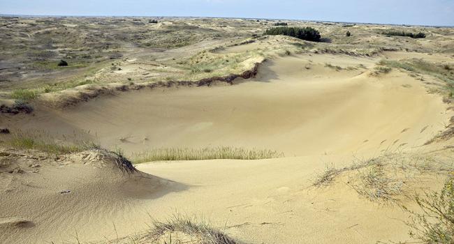 «Вот так красиво она выглядит»: Специалисты НАСА показали пустыню в Украине из космоса