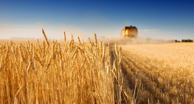 Против рынка земли в Украине могут быть только те негодяи, которые в 2013 году не хотели подписывать соглашение об Ассоциации с ЕС - Литвин