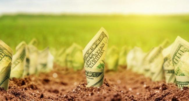 «Повторится приватизация 90-х, только с более серьезными последствиями»: Романченко предупреждает о рисках, связанных с запуском рынка земли в Украине