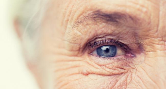 Ученые нашли способ замедлить преждевременное старение