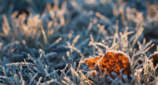 До -10 градусов: Синоптик предупредила о резком понижении температуры