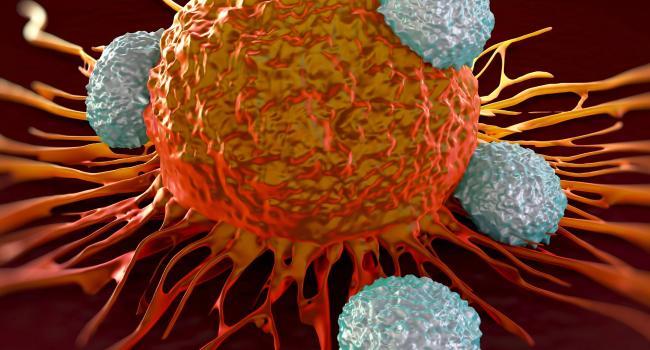 Учёные всё-таки установили главную причину развития рака