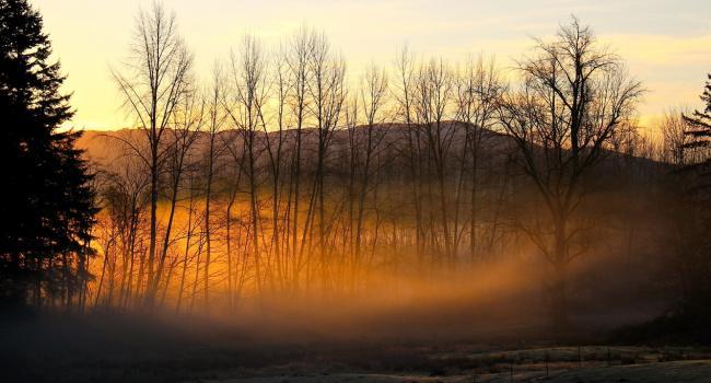 Приготовьтесь к зимним морозам: Синоптики шокировали прогнозом на конец недели