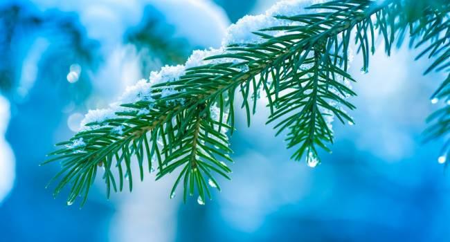 «Никакой стабильности»: Синоптики заявили, что февраль ознаменуется резкими температурными скачками