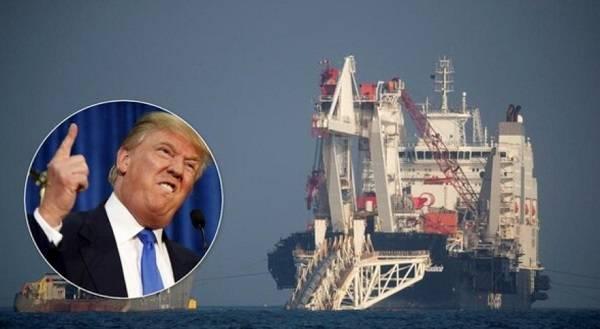 Трамп внезапно озадачил ответом на вопрос по «Северному потоку – 2»